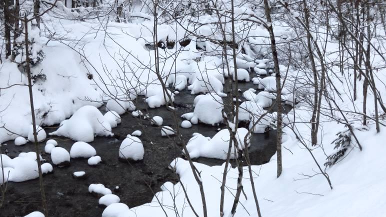 Die Steine im Schwarzenbach sehen mit Ihren Schneehauben wie Pilze aus