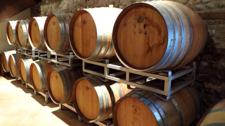 Eine Weinprobe in einer Cantina - ideal für einen Regentag
