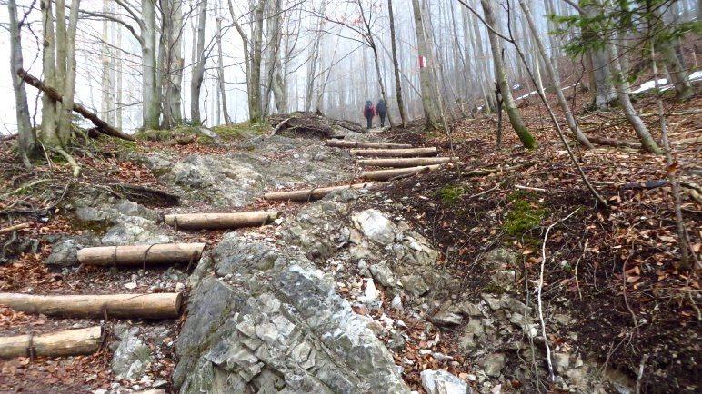 Steil führt der Weg begauf, mit vielen Stufen und zunächst ohne Schnee