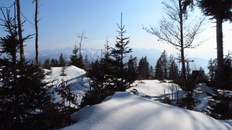 Im Abstieg im tiefverschneiten Wald