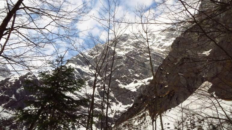 Durch den Wald haben wir einen Blick auf die Watzmann-Ostwand