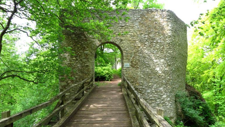 Der Eingang zur Ruine Rauber, der Diepoldsburg