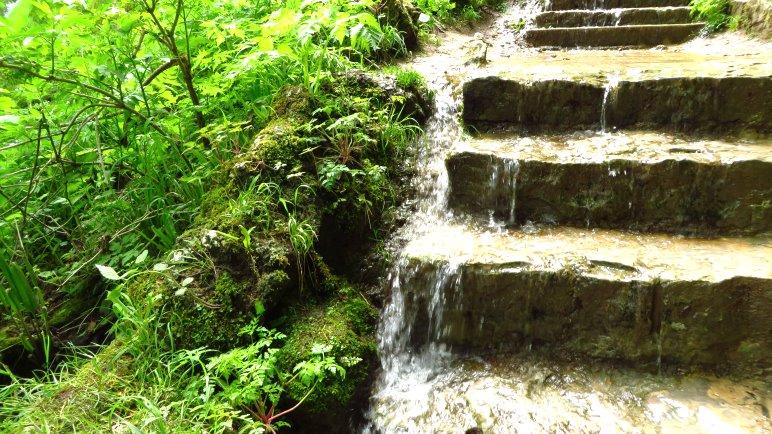 Das Wasser sucht sich seinen Weg, auch über die Treppenstufen