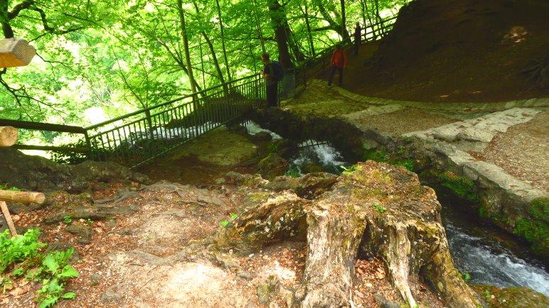 Der Blick von der Oberkante des Uracher Wasserfalls