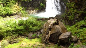 Ein Kunstwerk am ersten Reinbach-Wasserfall