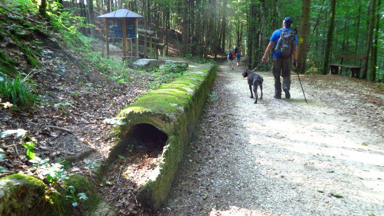 Wandern entlang der alten Soleleitung