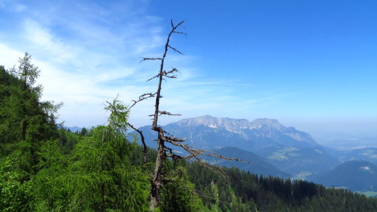 Ein Blick auf den Untersberg