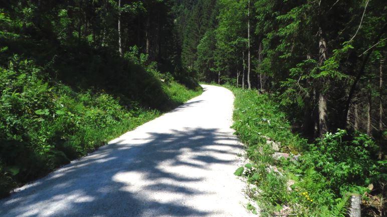 Der Wanderweg hinauf zum Kehlstein. Im unteren Teil sehr unspektakulär