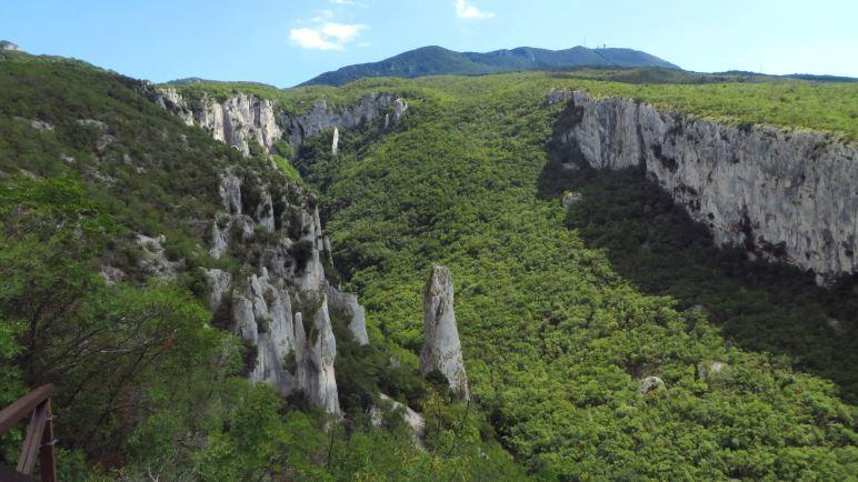 Die Vela Draga Schlucht. Vorne die Felssäulen, rechts die lange Felswand und im Hintergrund sieht man den Vojak, Istriens höchsten Berg