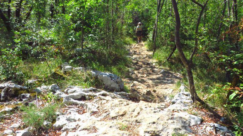 Der Wanderweg zur Vela Draga Schlucht ist leicht zu gehen, aber steinig