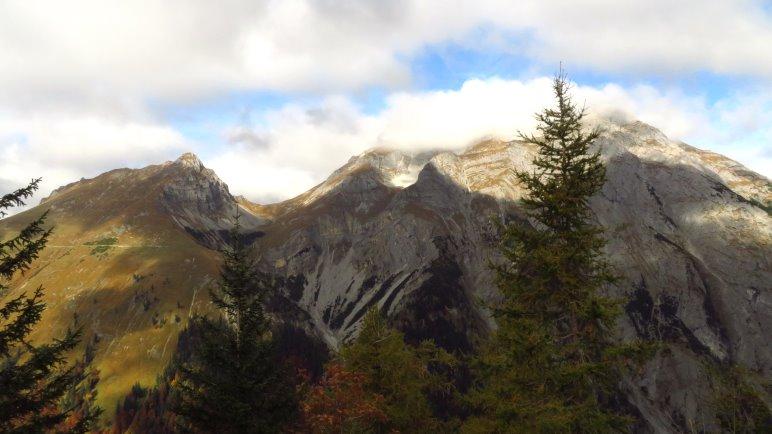 Der Blick von der Drijaggenalm am Panoramaweg auf das Gamsjoch
