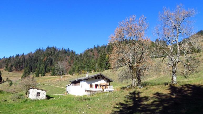 Auf der großen Almfläche in Richtung Spitzsteinhaus