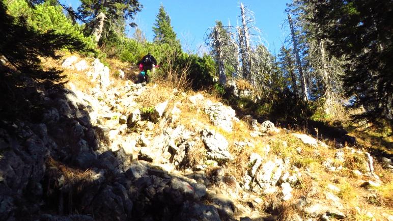 Noch ein wenig steiler geht's immer: Kurz vor dem Spitzstein-Gipfel