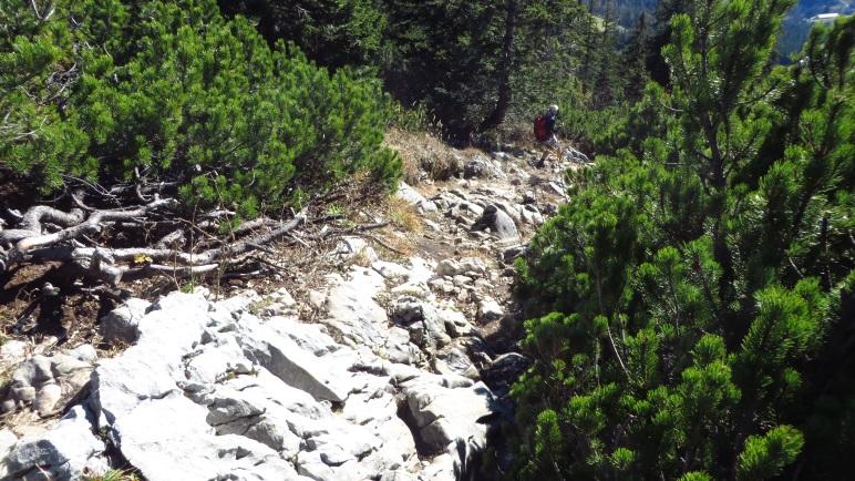 Der steile Abstieg vom Spitzstein-Gipfel