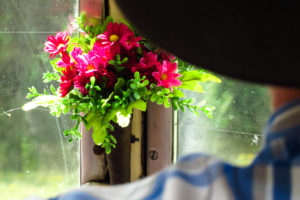 Nettes Detail im Bus: Blümchenvasen an den Fenstern