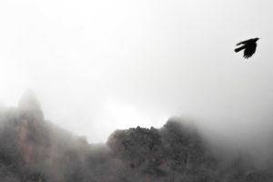 Nebelschwanden ziehen um das Lamsenjoch