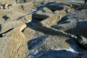 Vom Schlamm überdeckte Grundmauern