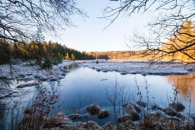 Winterlandschaft am Hackensee