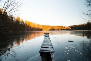 Der alte Steg am Hackensee