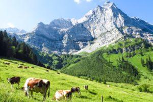 Die eindrucksvollen Karwendelberge