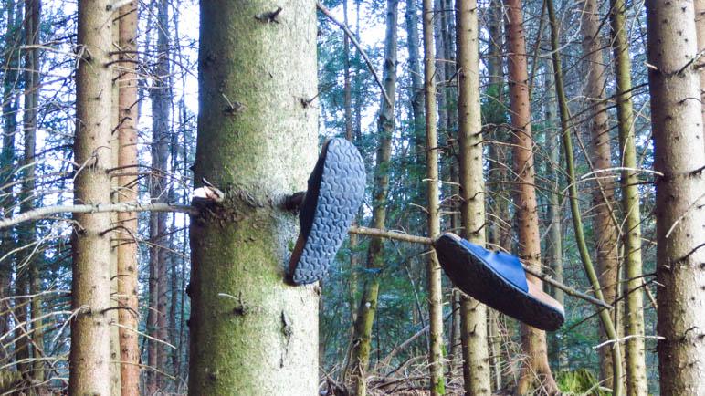 Beim Schlappen durch den Wald treffen wir auf diese Schlappen am Baum