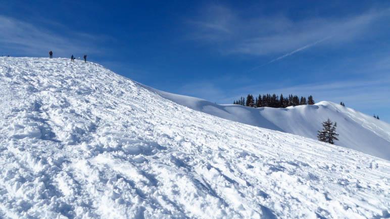 Der Blick zum Gipfelgrat des Wertacher Hörnles