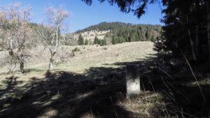 Im Spitzsteingebiet bei der Goglalm. Chiemgauer Alpen