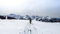 Schneeschuhwanderung auf den Schönkahler