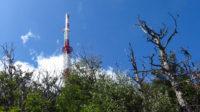 Die erste Antenne ragt aus dem Wald und zeigt an, dass wir bald am Ziel sind