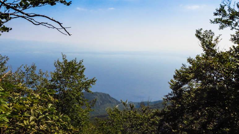 Ein Blick aus dem Wald heraus auf die Kvarner Bucht