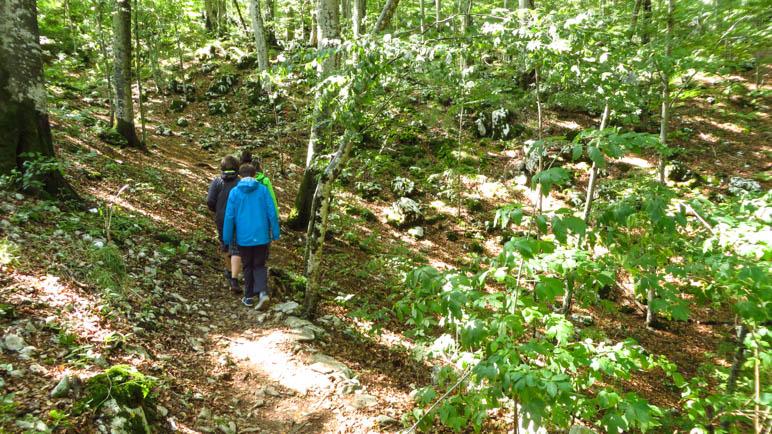 Von Beginn an ist der Weg ein schöner Bergpfad