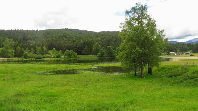 Am Schmalensee