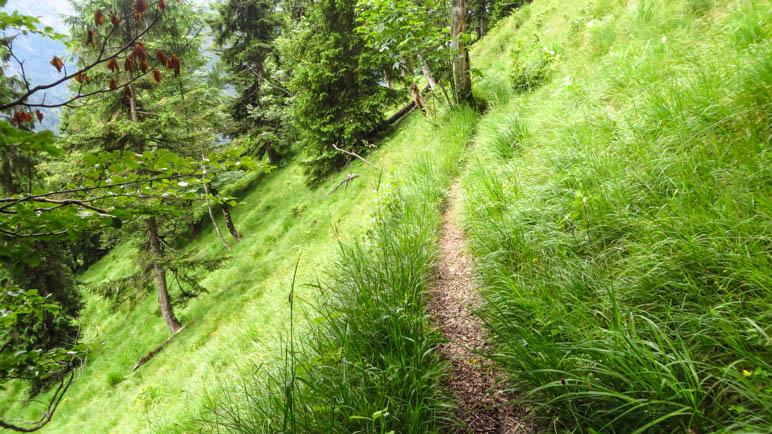 Der schmale Weg am steilen Berghang