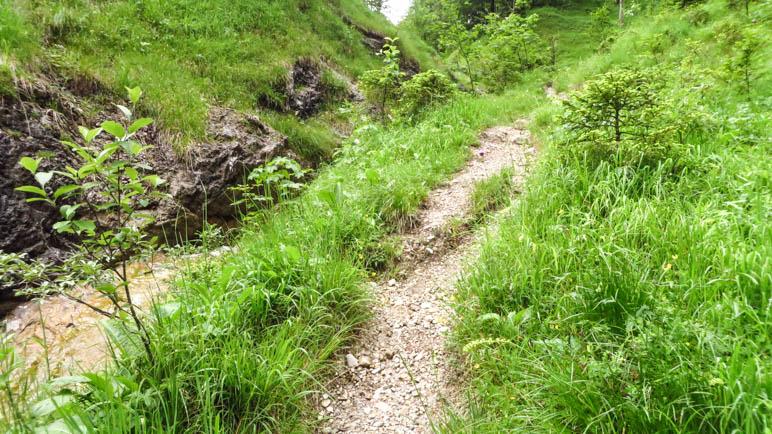 Schöner Wildbach und schmaler Bergpfad