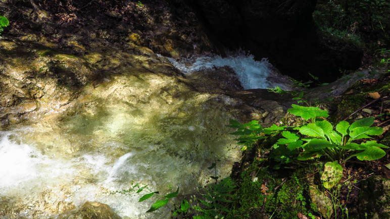 In der Schleifmühlenklamm kann man auch im Bach stehen, sogar direkt oberhalb vom Wasserfall