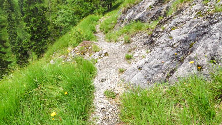 Ein schmaler Pfad über die steile Bergwiese