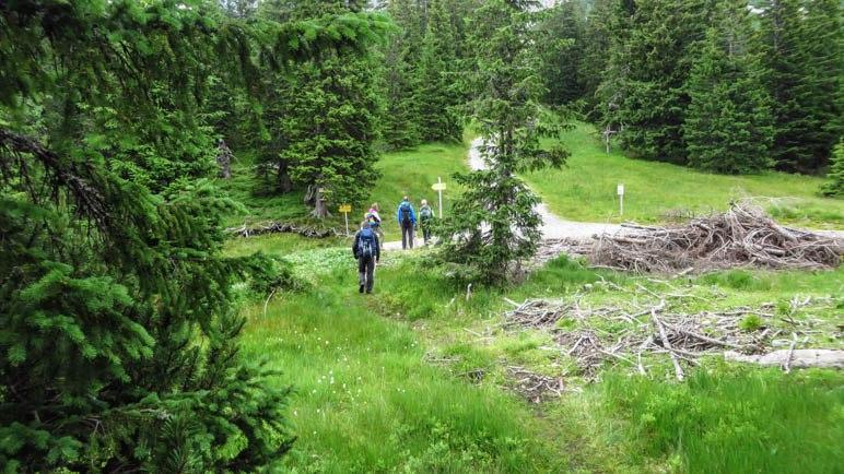 An der Kreuzung, hier allerdings schon im Abstieg. Hier treffen sich die Wege zu Mödlinger Hütte, Klinkehütte, Kalbling und Lahngang.