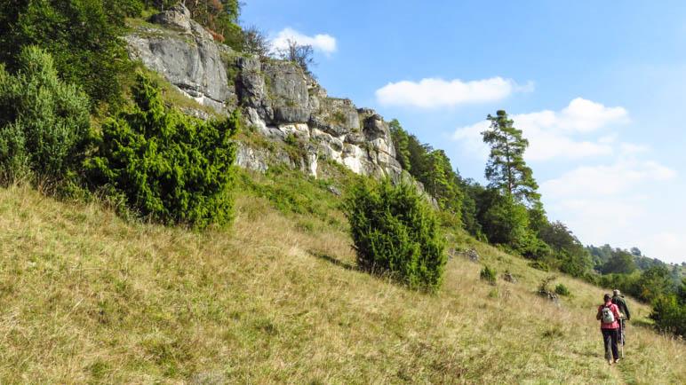 Ein schmaler Wanderweg am Hang, oberhalb die Felsen - im Gebiet der Gungoldinger Wacholderheide