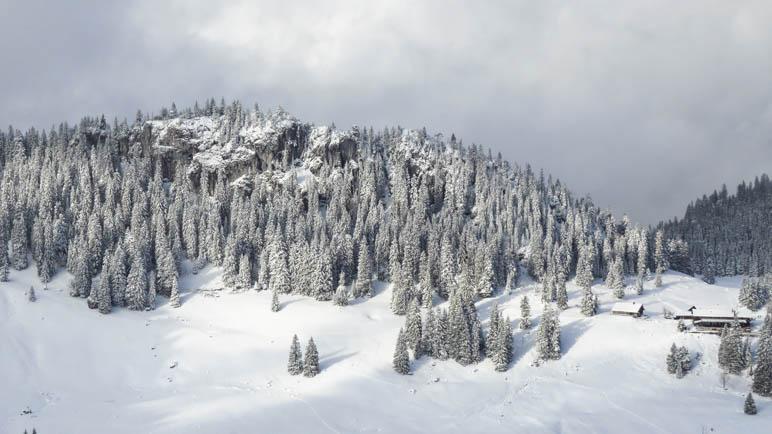 Die Obere Firstalm und der Winterwald