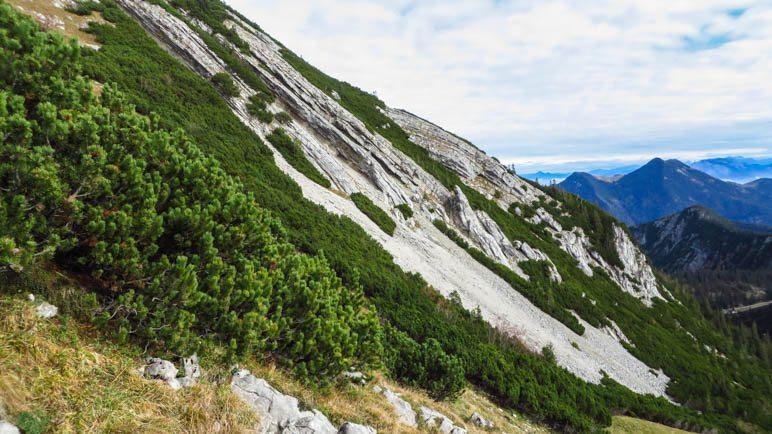 Ein Fest für Geologen: Schräg geschichtete Felsplatten. An dieser Stelle führt der Weg direkt an einem kurzen Abbruchkante entlang