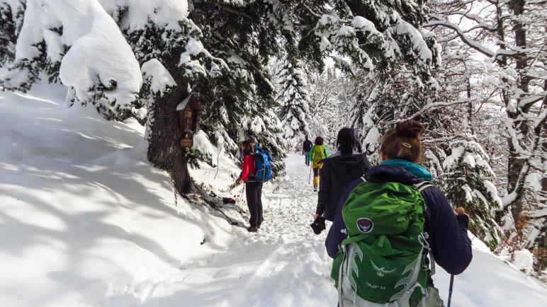 Auf dem Winterwanderweg zum Rotwandhaus hinauf