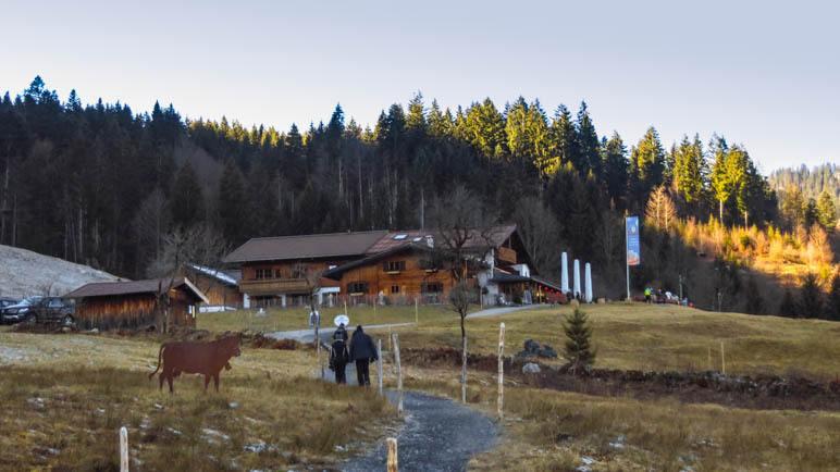 Die Alpe Dornach