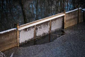 Gitter mit Eismuster am Fischweiher