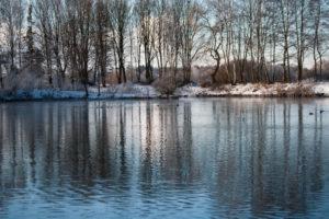 Ufer Semptquellenweiher