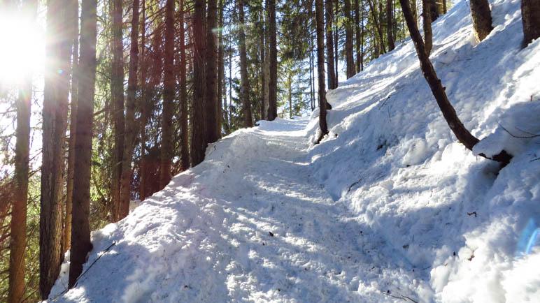 Aufstieg zur Taubenseehütte durch den Wald