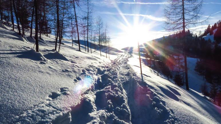 Der Sonne entgegen, vom schattigen Taubensee zurück zur Taubenseehütte