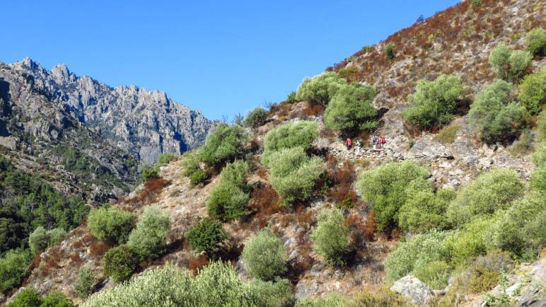Wanderweg am Berghang im vorderen Tavignanotal