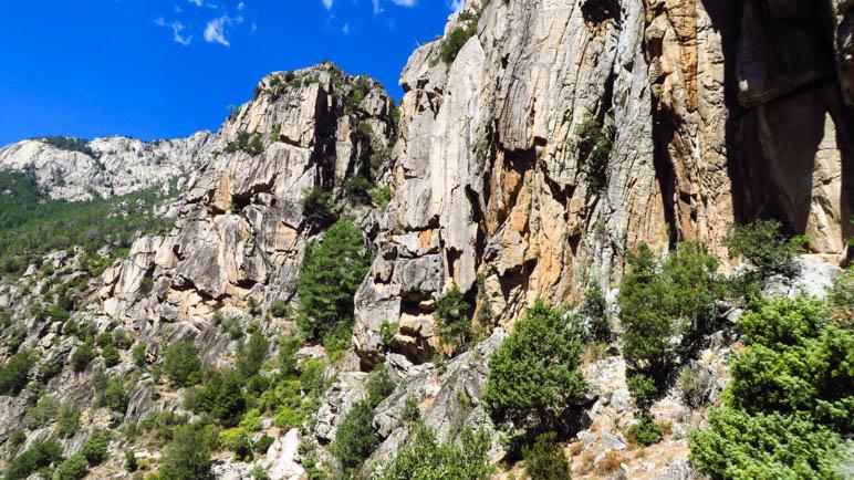 Die Felsberge im Tavignanotal