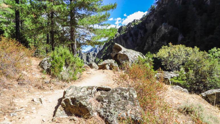 Auf dem Rüeckweg durch das Tavignanotal