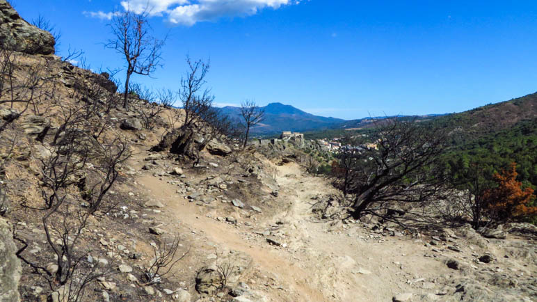 Noch einmal führt der Weg durch das Waldbrandgebiet, jetzt mit Blick auf die Festung von Corte